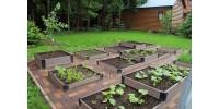 Декоративные – креативные решения для вашего сада